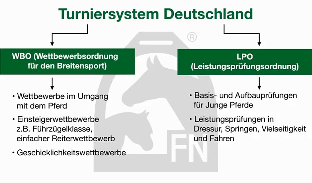 Turniersystem im Pferdesport // Quelle FN